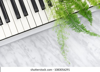 Sounds of nature. Electric piano keys and green fern leaves, on marble background.