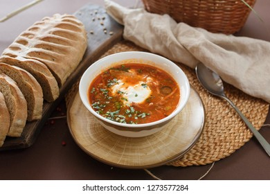 soup hodgepodge with sour cream