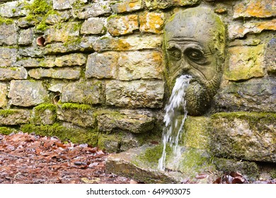 Source of underground water. Fountain in a forest with sparkling water. Water splashing from the mouth of a statue.