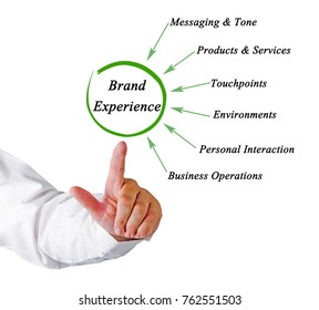 Sources of Brand Experience