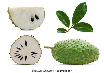 Soursop or custard apple fuite isolated on white background