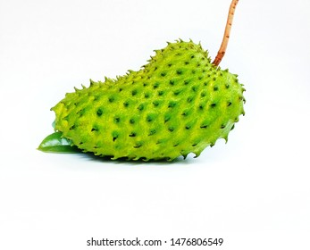 Soursop Fruit isolated. Isolated fruit soursop There are leaves underneath.