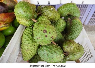 Soursop Prickly Custard Apple Annona Muricata Stock Photo (Edit Now