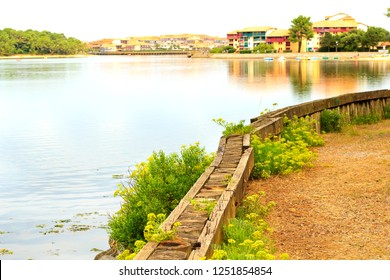 Soustons lake, nature site in Landes, at South West of France