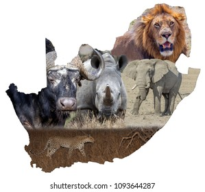 South Africa and the Big 5