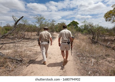 South Africa - November 2017: Wildlife rangers guides with guns walking away in Kruger National park bush searching for animals