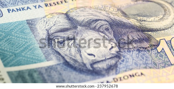 South African one hundred rand note close up 2