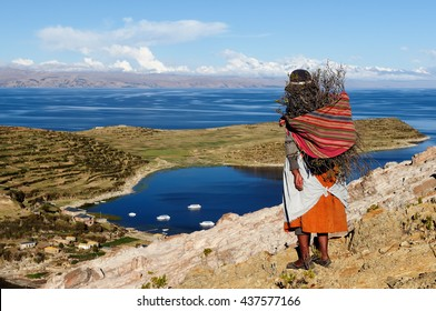 South America, Bolivia - Isla del Sol on the Titicaca lake.. Ethnic woman returning to the village with wood being used to make a fire in order to cook the food