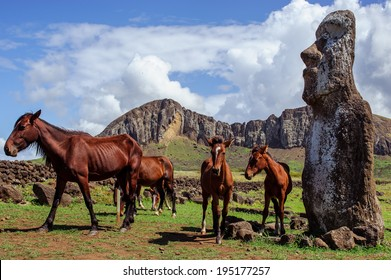 South America. Easter Island. Horses. Statues.