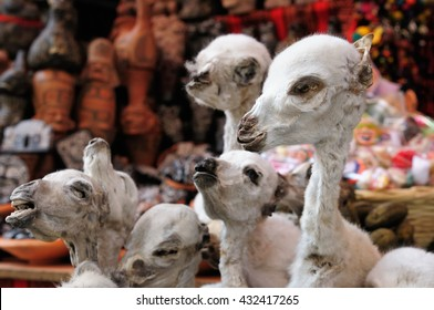 South America, La Paz, Witches Market, dried foeti of llamas on the stall in the la paz for traditional Aymara rituals