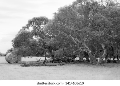 Rural Property Australia Images, Stock Photos & Vectors