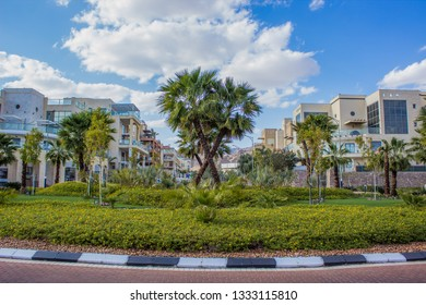south city street park outdoor nice beautiful landmark view with palm and grass flower bed near road and small white buildings in summer bright clear weather season time