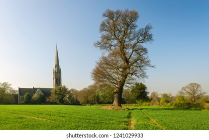 South Dalton, Yorkshire, UK. St Mary's Church flanked by trees and fields on a clear bright dawn morning in spring, South Dalton, Yorkshire, UK.