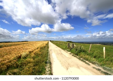The South Downs above Plumpton, Sussex, UK