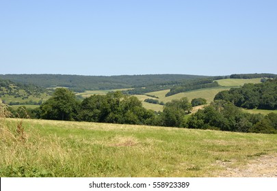 The South Downs countryside and landscape at Goodwood near Chichester, West Sussex, England