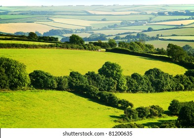 south hams countryside devon england uk