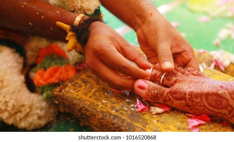 South Indian Bride Groom Images, Stock Photos & Vectors | Shutterstock