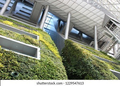 South Korea, Seoul - March 21: Green Architecture design of Seoul city hall. In door Plant wall and steel constructure on the March 21, 2016 in Seoul, South Korea