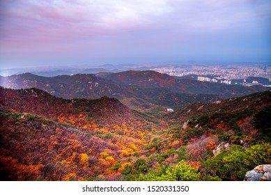 South Korea Travel,Temple in South Korea In autumn and covered with fog. Located on the Gwanaksan Mountain,Temple of south Korea in autumn,Tourist attraction in south Korea in autumn