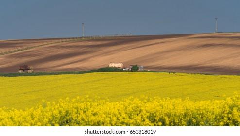 South Moravia landscape and farmland at sunrise