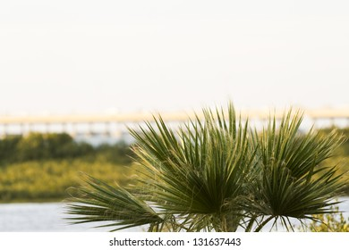 South Padre Island in the winter.