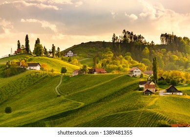 South styria vineyards landscape, near Gamlitz, Austria, Eckberg, Europe. Grape hills view from wine road in spring. Tourist destination, travel spot.
