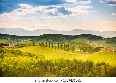 South styria vineyards landscape, near Gamlitz, Austria, Europe. Grape hills view from wine road in spring. Tourist destination, travel spot.