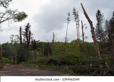 Southbury, Connecticut/USA - May 15, 2018: EF -1 tornado takes down trees and power lines across portions of the state.