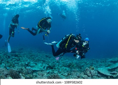 Southeast Sulawesi, Indonesia-March 8, 2018 : Divers are diving around coral reefs at Wakatobi National Park.