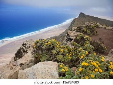 Southern Fuerteventura, Jandia, view from the highest point of the island, Pico de Zarza, towards Playa de Barlovento