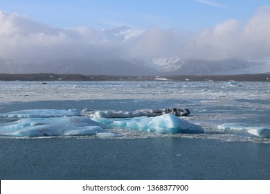Jökulsárlón, Southern Iceland on 27.02.2019: The shining ice floes  around Jökulsarlon glacier lagoon on a lovely and sunny winter day