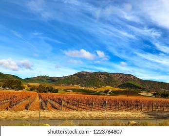 Southern Oregon Vineyard with rolling hills landscape