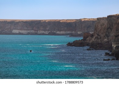 Southern right whale breaching and jumping in front of a cliff. Young individual alone. Wide angle photo. Landscape. Turquoise ocean. Great Bight, Head of Bight, Nullarbor, South Australia