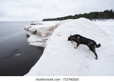 The southern shore of Lake Ladoga - the largest fresh water source in Europe. It is located in the territory of Karelia and Leningrad region. The depth reaches 240 meters.