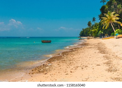 The southernmost beach on Perhentian Kecil, the gorgeous Petani Beach, is a quiet stretch of golden sand, turquoise water and palm trees in the state of Terengganu, Malaysia.