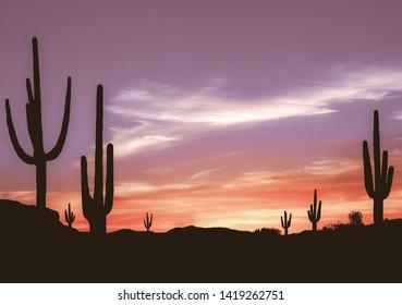 Southwest Desert – Aged Colorful Sunset in Wild West Desert of Arizona with Cactus