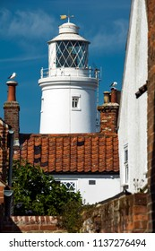 Southwold lighthouse and seabirds at English seaside resort