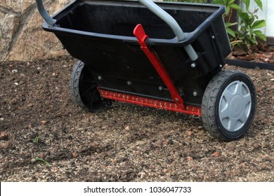 Sowing lawn grass seeds with a drop lawn spreader in the summer garden