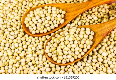 Soy bean in wood spoon full on wooden background,Macro shot of soybeans fills the frame, selective focus,texture,soy milk,soy oil