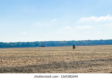 Soybean field after harvest in the fall