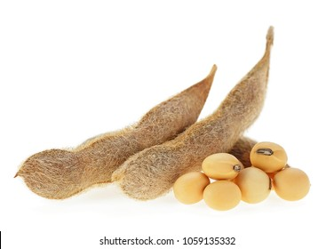 Soybeans isolated on a white background