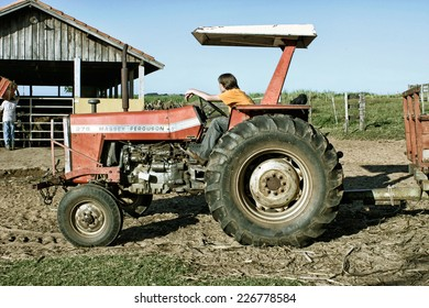 Hercul�¢ndia, SP, Brazil - Abr 30, 2006. A normal day at a farm with workers driving a tractor to a barn to feed animals.