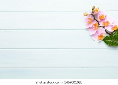 Spa aromatherapy background, flat lay of various beauty care products decorated with simple orchid flowers.