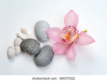 Spa background with orchid flower and stones
