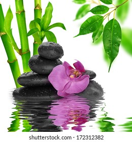 spa Background - purple orchids black stones and bamboo on water