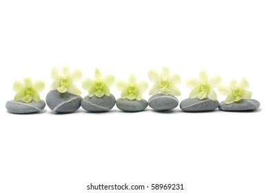 Spa composition of stones and orchid