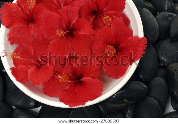 Spa composition of stones and red flower