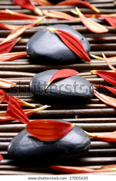 Spa composition of stones and red petals