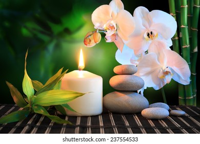 spa composition: white orchid, candle and stones in green background