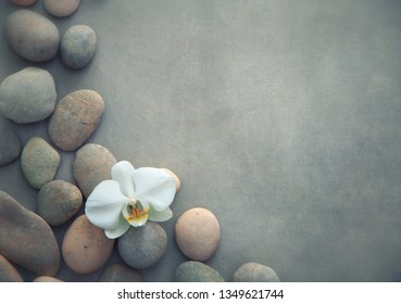 Spa concept with basalt stones and white orchid. Gentle spa and wellness background